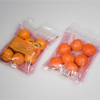 citrus - Twin-Bag